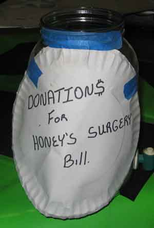 Honey's donation jar.