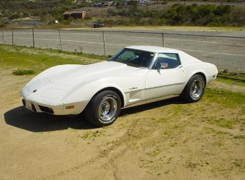 Garrett White Stingray-7